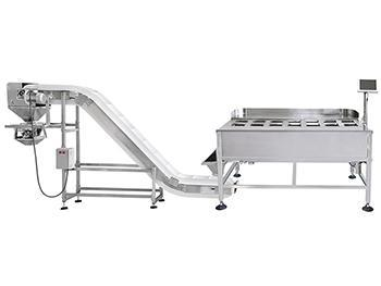 Semi-Automatic Packing Line (manual operation),with 14 heads weigher, Inclined feeding conveyor